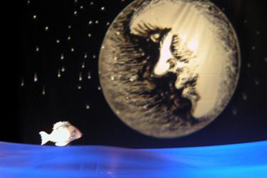 Cielomaresoleluna  - Rassegna di Teatro per Ragazzi