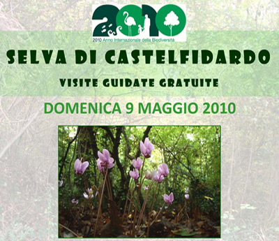 "Visite guidate gratuite alla ""Selva di Castelfidardo"""