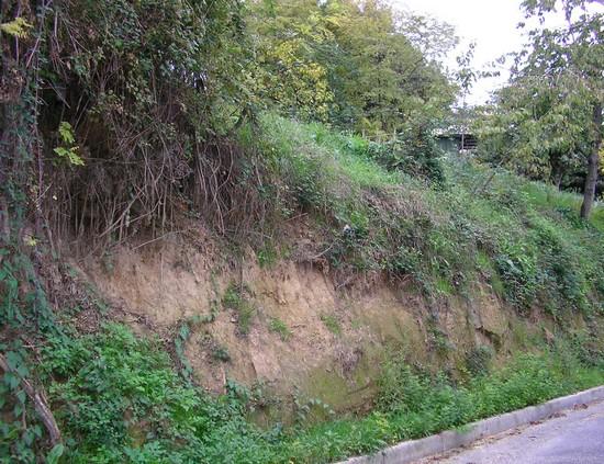 Sistemazione scarpata in zona Fornaci