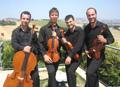 Martedì musicale con il Mannheimer quartet