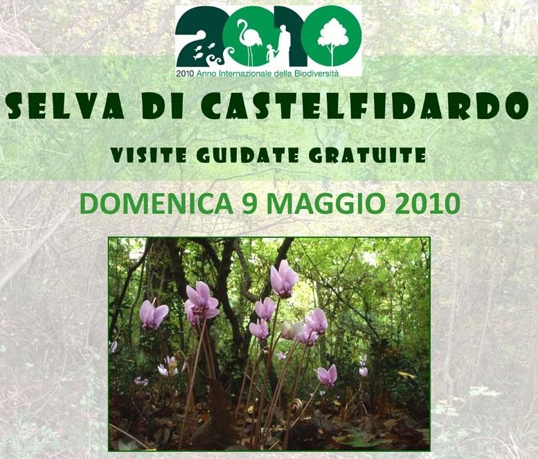 Visite guidate gratuite alla Selva