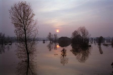 Comunicazioni Danni  Alluvione Aziende e Privati