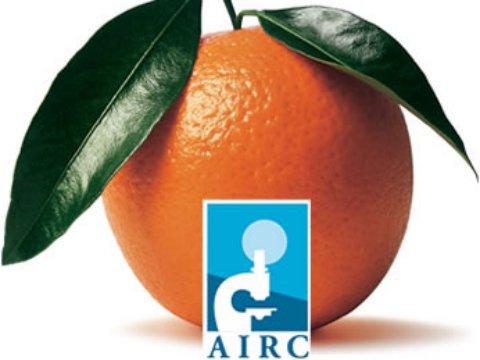 Le arance della salute dell`A.I.R.C.