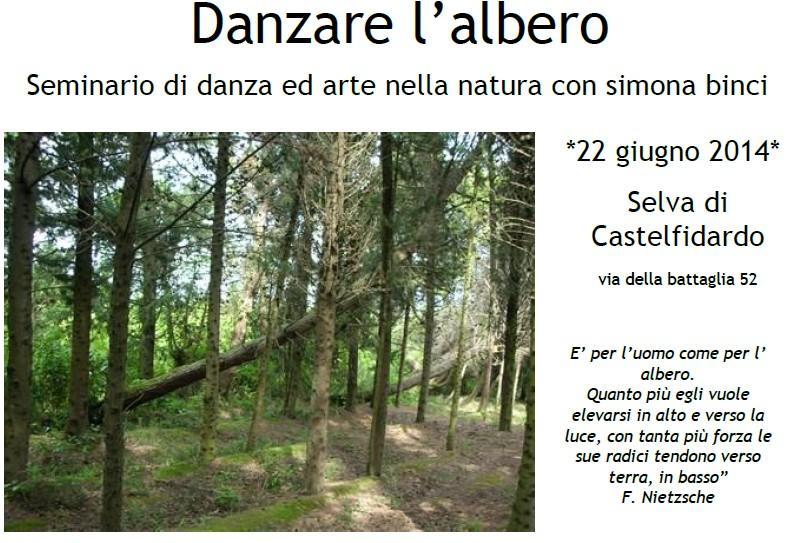 Danzare l`albero domenica alla Selva