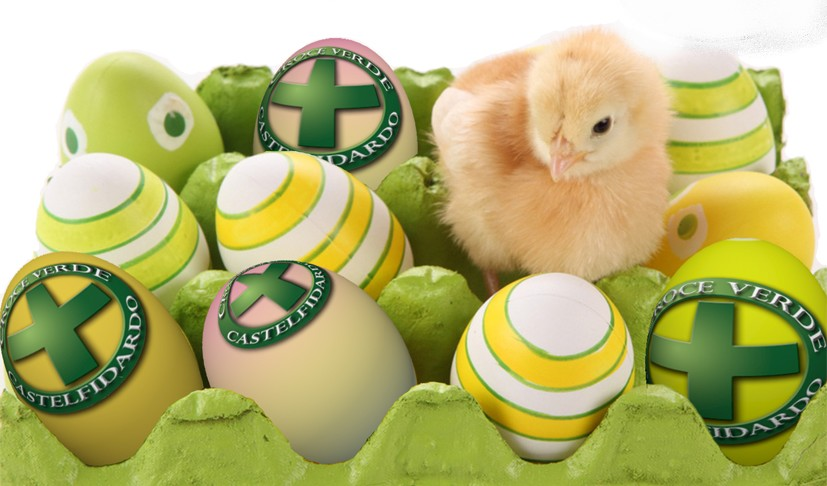L`uovo sociale della Croce Verde