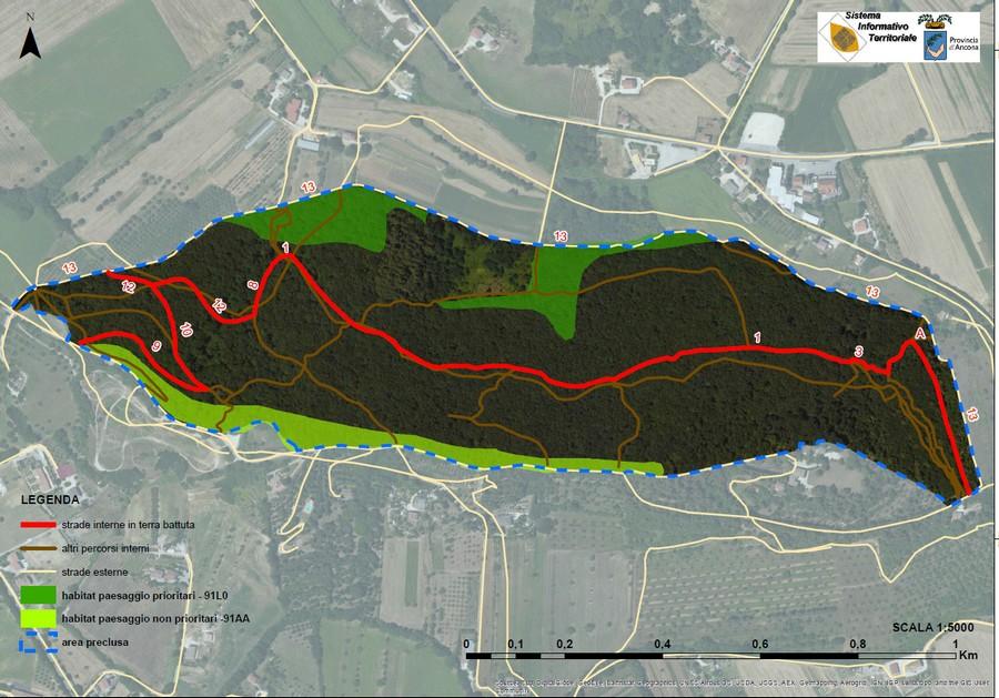 Un percorso ciclabile nella Selva