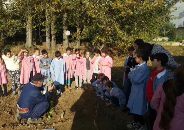 Orto di classe, dalla semina alla compostiera