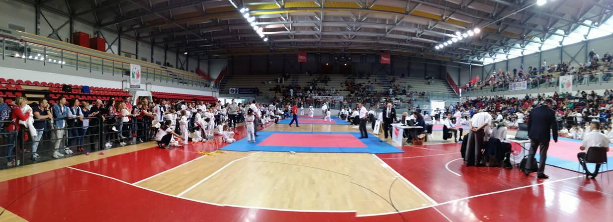 Asd Karate, pioggia di medaglie al PalaBaldinelli
