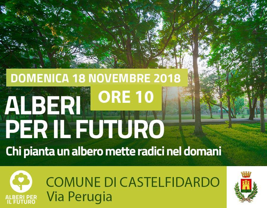 Piantumazione di 50 alberi in via Perugia